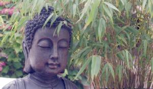Richtig und falsch... Meditation - HeilAkad