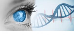 Trauma und genetische Disposition - HeilAkad-Weiterbildung